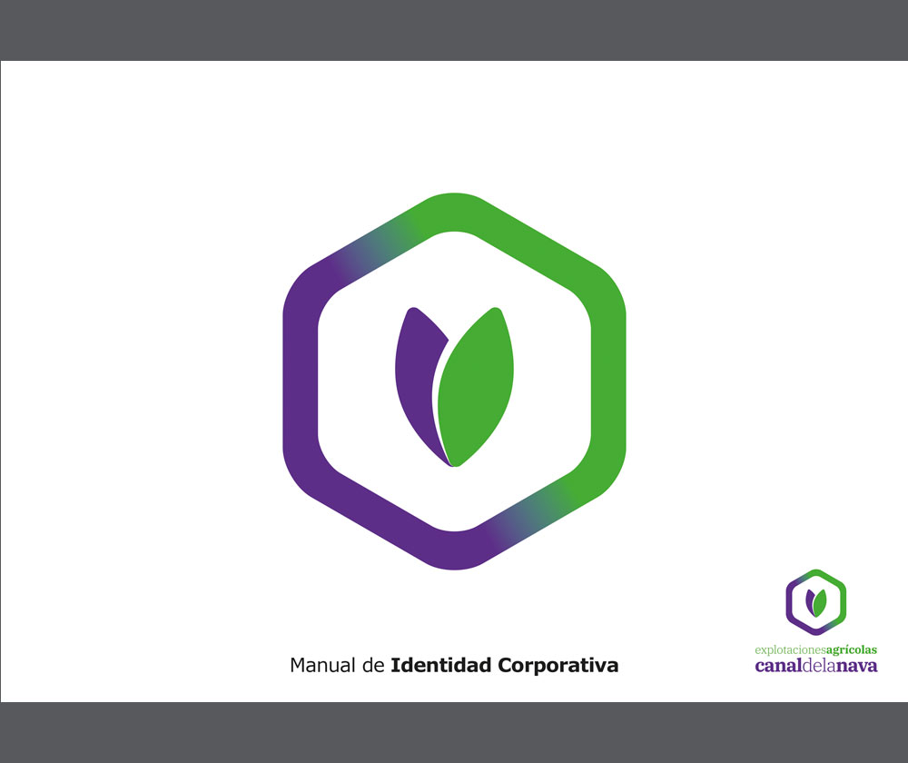 manual-corporativo-logotipo-valladolid(1)